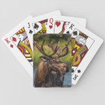 "Bull moose feeding in Glacier National Park Playing Cards<br><div class=""desc"">Bull moose feeding in Glacier National Park,  Montana,  USA 