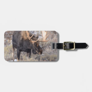 Bull Moose in field with Cottonwood Trees Bag Tag