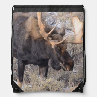Bull Moose in field with Cottonwood Trees Drawstring Backpack