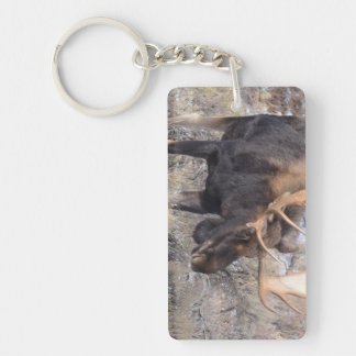 Bull Moose in field with Cottonwood Trees Keychain