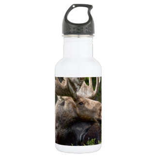 Bull Moose In the Wild Water Bottle