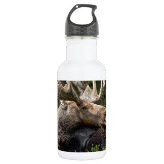 Bull Moose In the Wild Water Bottle