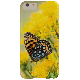 Bull Moose jousting in field with Cottonwood Trees Barely There iPhone 6 Plus Case