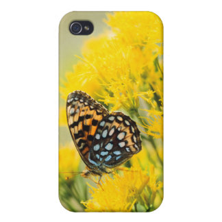 Bull Moose jousting in field with Cottonwood Trees Case For iPhone 4