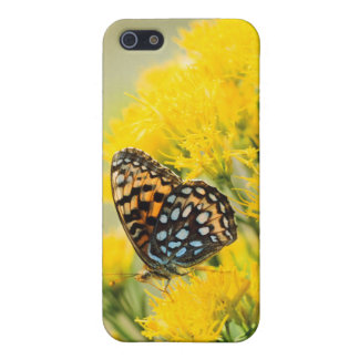 Bull Moose jousting in field with Cottonwood Trees Case For iPhone SE/5/5s