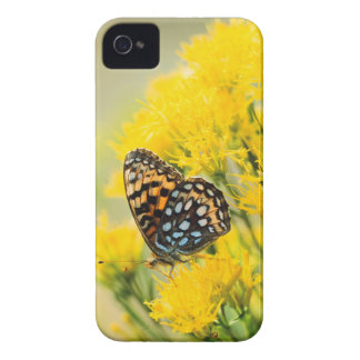 Bull Moose jousting in field with Cottonwood Trees Case-Mate iPhone 4 Case