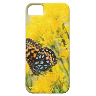 Bull Moose jousting in field with Cottonwood Trees iPhone SE/5/5s Case