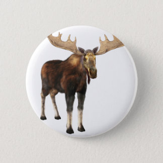 Bull Moose Looking to the Front Button
