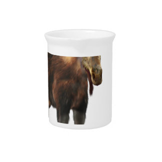 Bull Moose Looking to the Front Pitcher