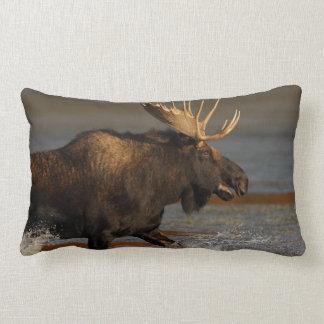 Bull Moose Lumbar Pillow