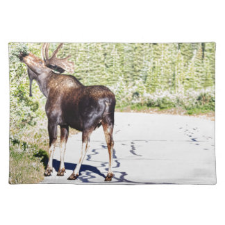 Bull Moose Munching in The Road Cloth Placemat