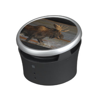 Bull Moose Bluetooth Speaker