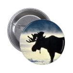 Bull moose pin