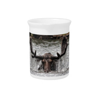Bull Moose Pitcher