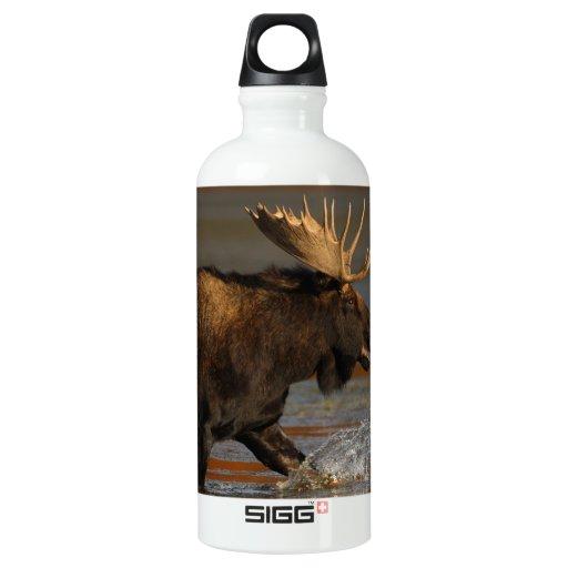 Bull Moose SIGG Traveler 0.6L Water Bottle