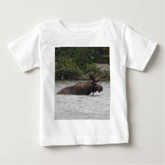 Bull Moose Tshirts