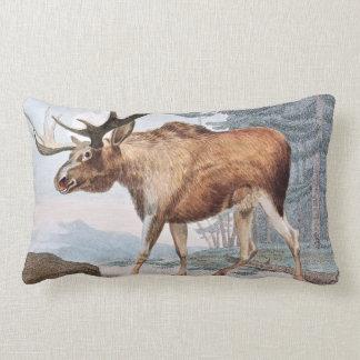 Bull Moose Vintage Drawing