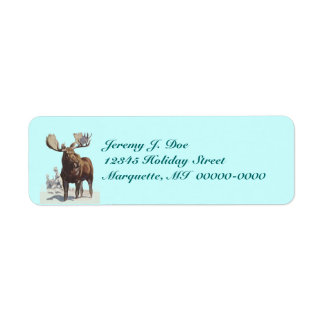 Bull Moose Wading In Snow Wildlife Nature Labels