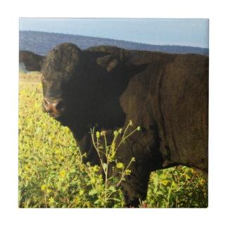 Bull negra grande en girasoles - Toro - tauro Azulejo Cuadrado Pequeño