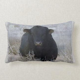 Bull negra occidental en escena del invierno cojín