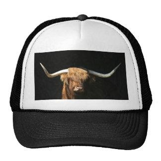 Bull or cow cap trucker hat