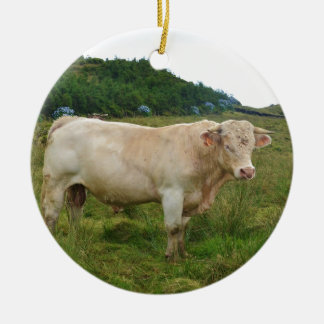 Bull Double-Sided Ceramic Round Christmas Ornament