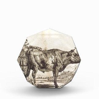 Bull por Adriaen van de Velde