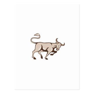 Bull que carga el dibujo animado lateral postal