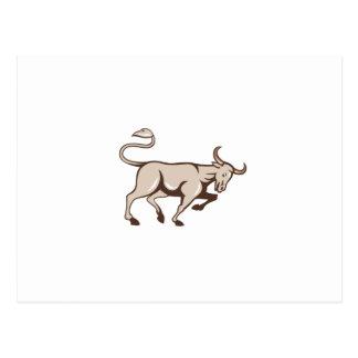 Bull que carga el dibujo animado lateral postales
