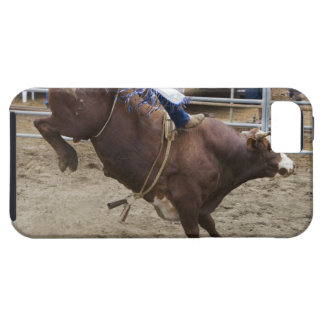 Bull rider at rodeo iPhone 5 covers