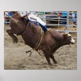 Bull rider at rodeo poster