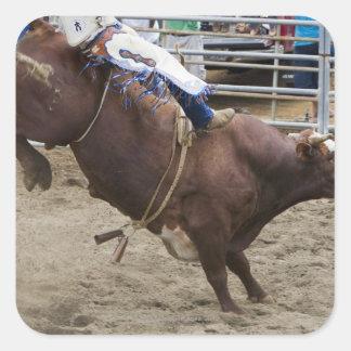 Bull rider at rodeo sticker