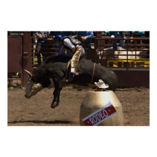 Bull rider hangs on for dear life poster