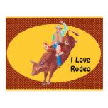Bull Rider ~ I Love Rodeo Post Card