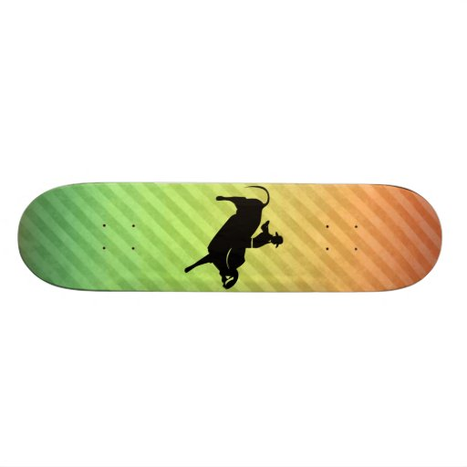 Bull Rider Skateboards