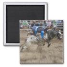 Bull rider thrown off bull magnet