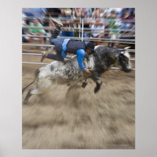 Bull rider thrown off bull poster