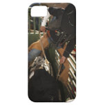 Bull rider tying rope on bull in the chute iPhone 5 covers