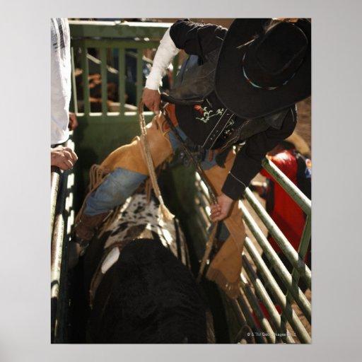Bull rider tying rope on bull in the chute poster