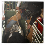 Bull rider tying rope on bull in the chute large square tile