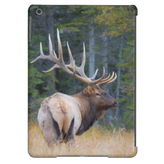 Bull Rocky Mountain Elk Case For iPad Air