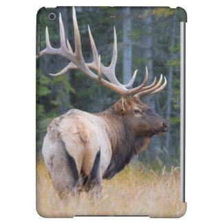 Bull Rocky Mountain Elk iPad Air Cover