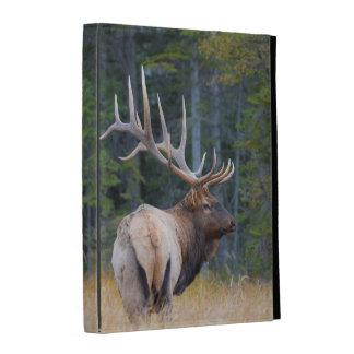 Bull Rocky Mountain Elk iPad Folio Cover