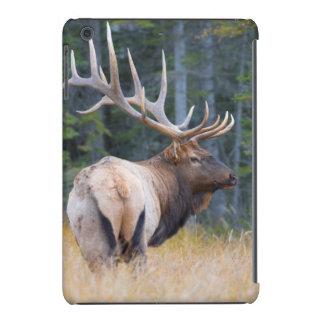 Bull Rocky Mountain Elk iPad Mini Retina Cases