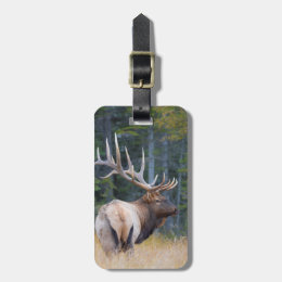 Bull Rocky Mountain Elk Luggage Tag