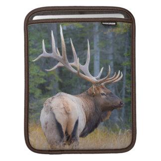 Bull Rocky Mountain Elk Sleeve For iPads