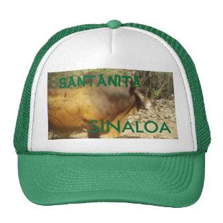 bull, SANTANITA, SINALOA - Customized Trucker Hat