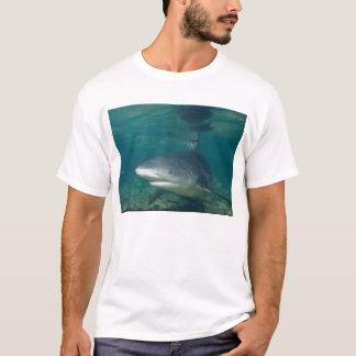 Bull Shark - Carcharhinus leucas T-Shirt