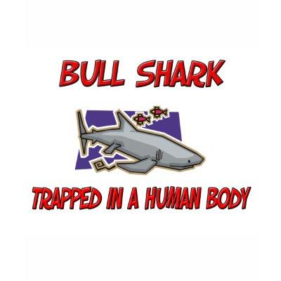 bull shark facts. baby ull shark pictures.