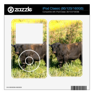 Bull Skin For The iPod Classic